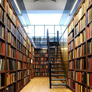 Библиотеки Шемятино